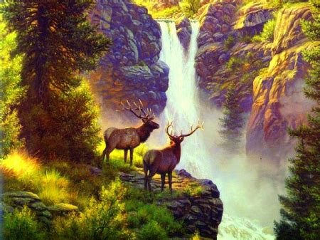 Animal Scenery Wallpaper - elk waterfall waterfalls nature background