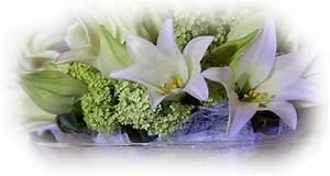 Fleurs Pour Mariage : tubes mariage fleurs ~ Dode.kayakingforconservation.com Idées de Décoration