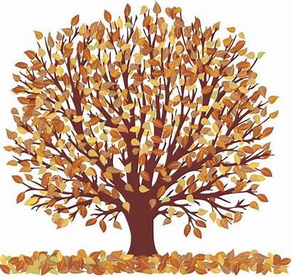 Clipart Autumn Season Clip Fall Leaves Trees