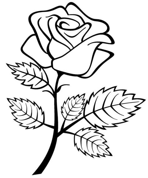 Flower Sketch Easy Rose Gallery Rose Flower Drawing