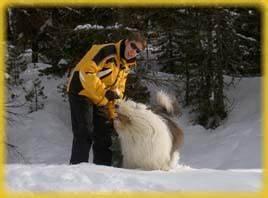 Winterurlaub In Der Schweiz : snowboots icebear ~ Sanjose-hotels-ca.com Haus und Dekorationen