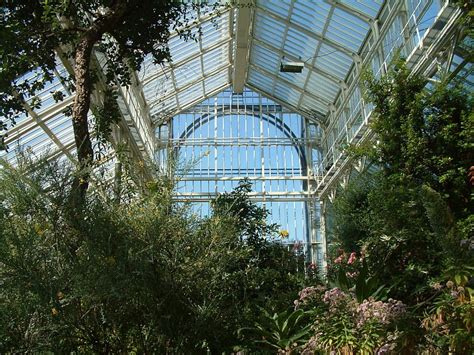Botanischer Garten Berlin Victoriahaus by Location Botanical Garden Berlin De Wedding