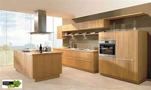 Moderne Küche Mit Kochinsel Holz : moderne k che eiche ~ Bigdaddyawards.com Haus und Dekorationen