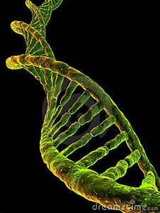 Dna Model Stock Photography - Image: 4368782
