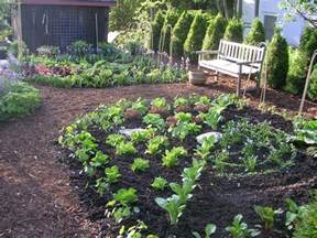 kitchen gardening ideas kitchen garden designer ecker ogden