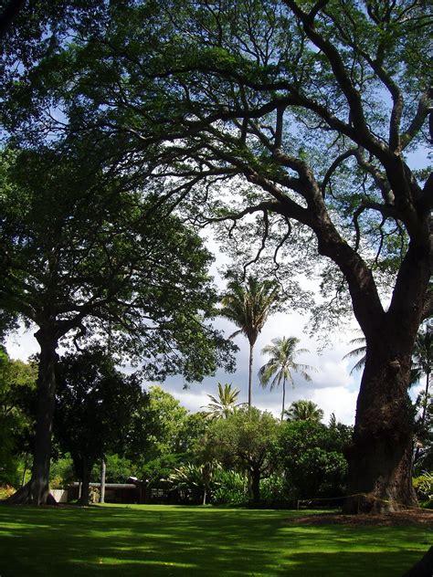 Bontanical Gardens by Foster Botanical Garden