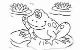 Frog Coloring Tadpole Pages Cycle Frogs Colouring Leap Drawing Printable Toad Cake Quality Getcolorings Getdrawings Sheet Leapfrog Sheets Baby Housewarming sketch template