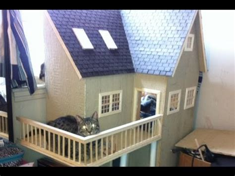 how to house a cat cat trees are lame cat houses are awesome youtube