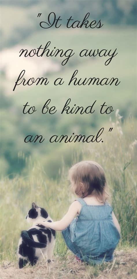 animal cruelty quotes ideas  pinterest quotes