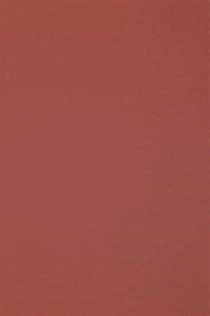 Rose Venetian Blush Serum Drops Cosmetics Swatch