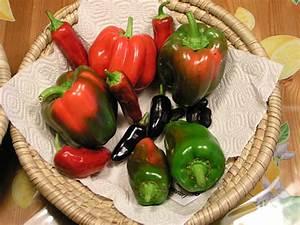 Wann äpfel Ernten : oktober 2005 ~ Lizthompson.info Haus und Dekorationen