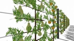 Spalierobst Als Sichtschutz : sichtschutz mit spalierobst aluminiumpfosten und edelstahlseilen green sichtschutz garten ~ Orissabook.com Haus und Dekorationen