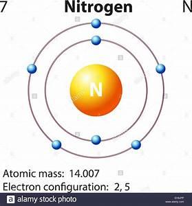 33 Bohr Diagram Of Nitrogen