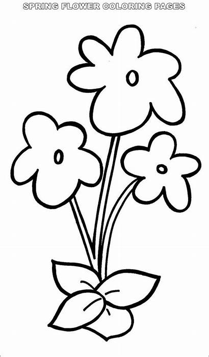 Spring Flower Coloring Pages Printable Simple Stpetefest