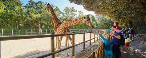 r 233 ouverture du zoo des sables d olonne vend 233 e tourisme