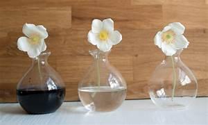 Wassergläser Mit Stiel : experiment wir f rben blumen mit lebensmittelfarben ~ Buech-reservation.com Haus und Dekorationen