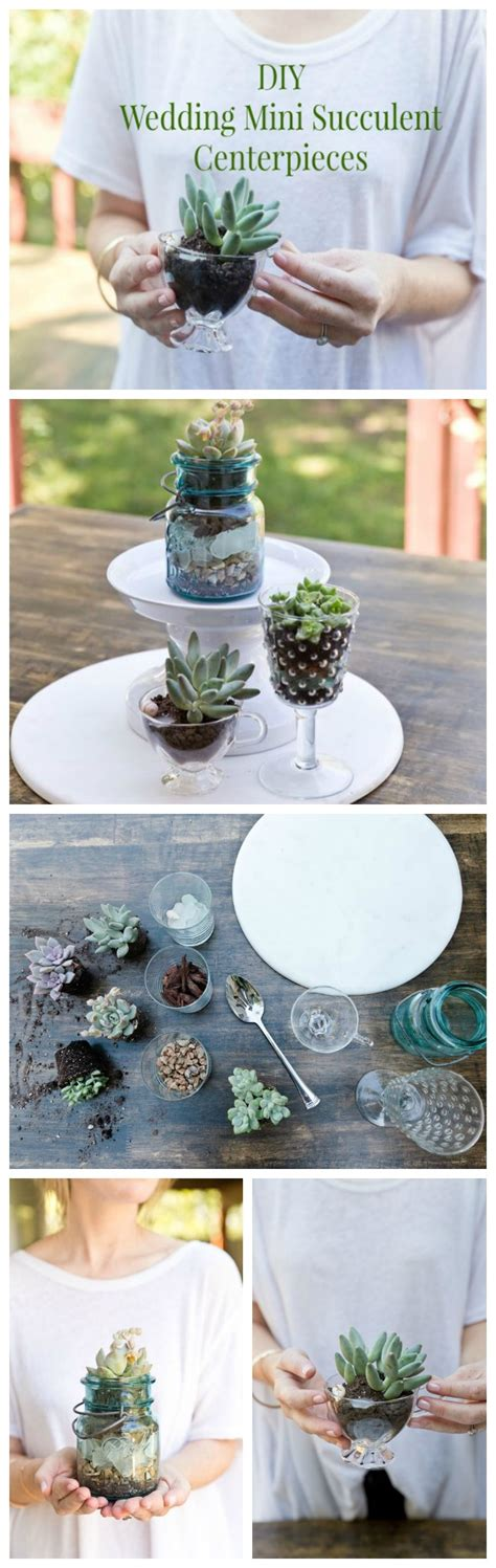 Diy Wedding Succulent Centerpieces Rustic Wedding Chic