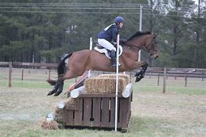 Quick Southern Pines Mid-Morning Update | Eventing Nation ...