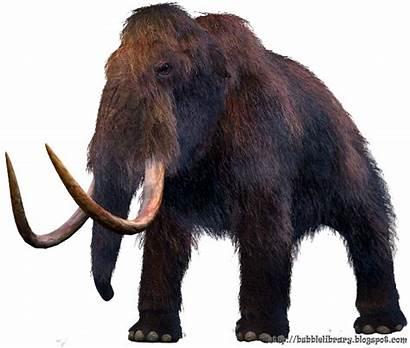 Mammoth Extinct Animals Awesome Hewan Heidi Yang