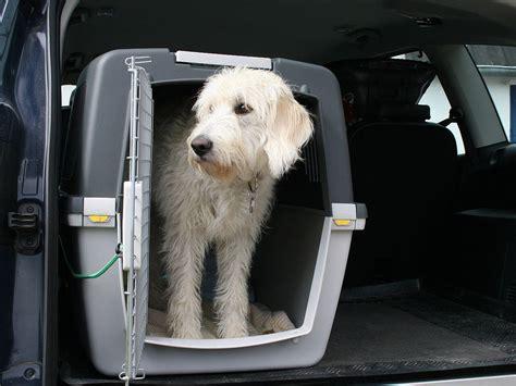 hund im auto transportieren hund im auto so reisen sie mit dem vierbeiner am