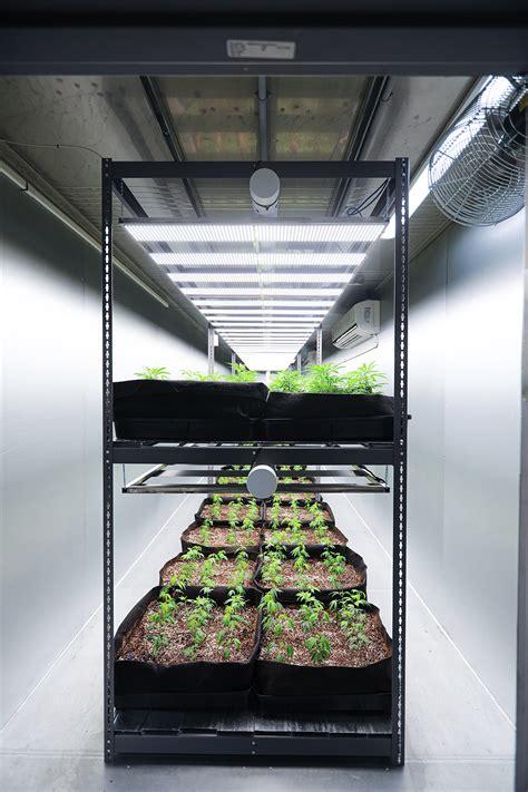 Vertical Farming for Cannabis - Micro Lab Farms