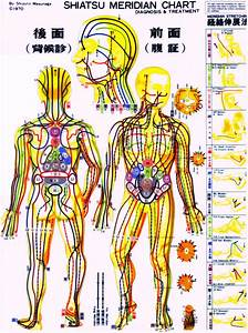 Body Meridian Chart