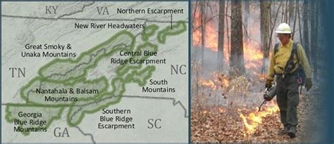 southern blue ridge fire learning network