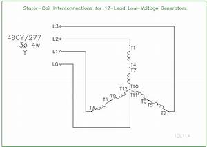 Wiring Diagram For 12 Lead Generator