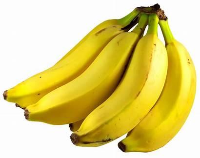 Banana Yellow Fruit Bananas Transparent Clipart Fruits