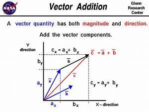 Vectors  U0026 Scalars