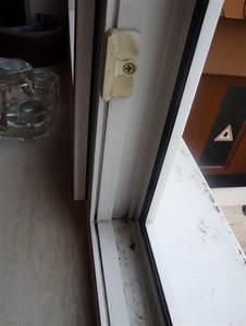 Gekippte Fenster Sichern : fenstersicherung hinter gittern der katzenknast ~ Michelbontemps.com Haus und Dekorationen