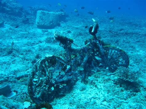 Dive In Lombok by Gili T Bounty Wreck With Mango Dive Picture Of Gili