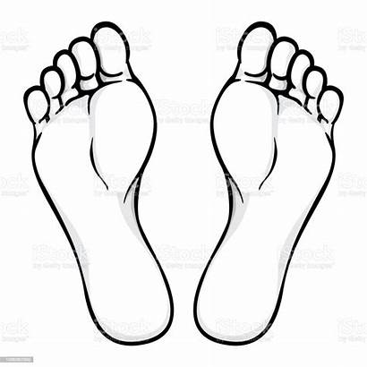 Foot Sole Illustration Ideal Plant Vector Catalogs