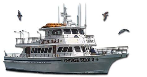 Fishing Boat Jobs Texas by Welcome To Texasfishinglicense Org Get Your Texas
