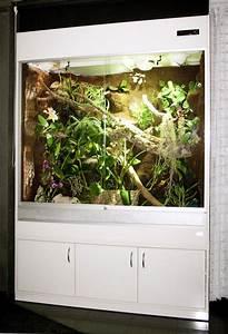 Terrarium Für Pflanzen : terrarium f r fidschi leguane typ r03 ein regenwaldterrarium mit sandboden dem habitat der ~ Frokenaadalensverden.com Haus und Dekorationen