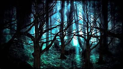 Forest Background Dark Darkness Desktop Wallpapers Wallpapersafari