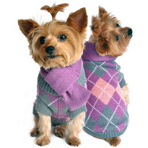 doge sweater argyle purple sweater with scarf baxterboo