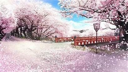Sakura Japanese Japan Wallpapers Mac Backgrounds Wallpaperaccess