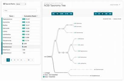 Analysis Nanopore Data Sequencing Workflow Workflows