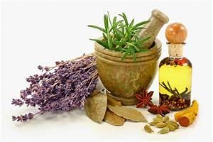 Приготовить настойку из чистотела для лечения простатита
