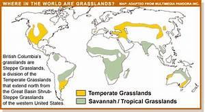 Vanishingspecies Grassland