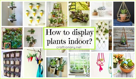how to display craftionary