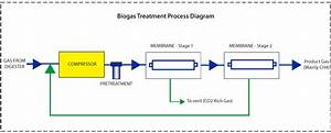 Biogas Treatment  Processing And Systems