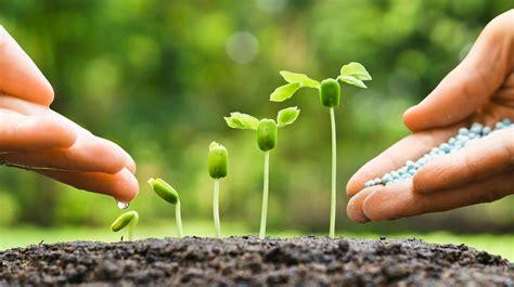 Im Frühjahr by Gartenarbeit Im Fr 252 Hjahr Gartenbeet Und Rasen Richtig D 252 Ngen