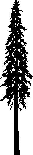 1000 images about pnw tattoo on pinterest douglas fir