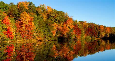 fall color carolina fall color map folkmoot usa