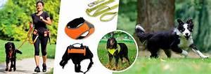 Harnais De Securite Pour Elagage : gilets de s curit harnais et laisses pour chien ~ Edinachiropracticcenter.com Idées de Décoration