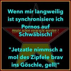 zweideutige sprüche 678 best images about let 39 s talk about zweideutige sprüche und humor on