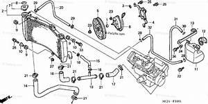 Honda Motorcycle 2002 Oem Parts Diagram For Radiator  2