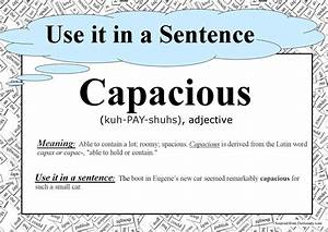 Capacious  U2013 Use It In A Sentence U2026